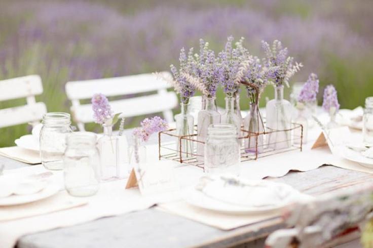 BI_Provence_7