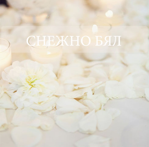 BI_Snow_white_1