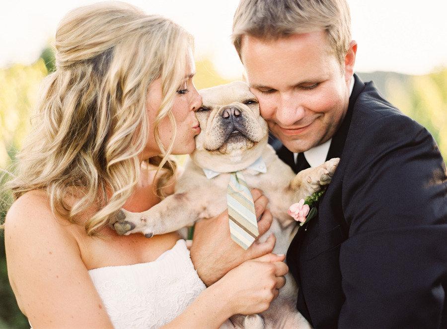 BI_wedding pets