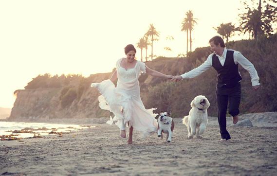 BL_wedding_pets 3